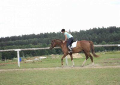 oboz-konie-2011-0210