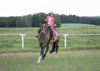 oboz-konie-2011-0215