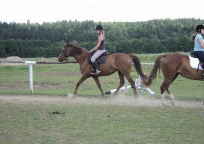 oboz-konie-2011-0217