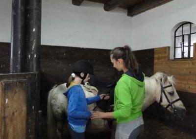oboz-konie-2013-1-0001