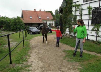 oboz-konie-2013-1-0004