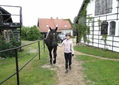 oboz-konie-2013-1-0005