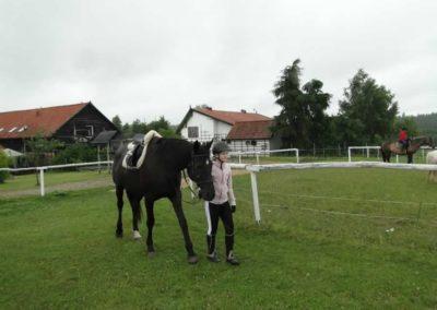oboz-konie-2013-1-0007