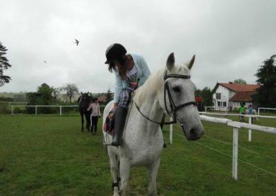 oboz-konie-2013-1-0008