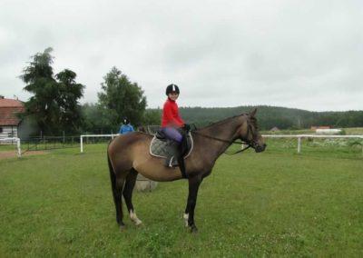 oboz-konie-2013-1-0009