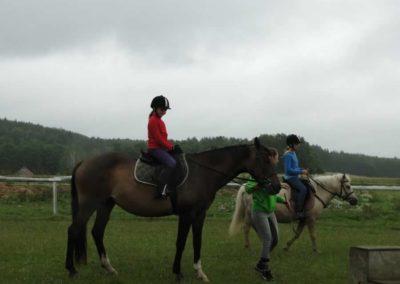 oboz-konie-2013-1-0010