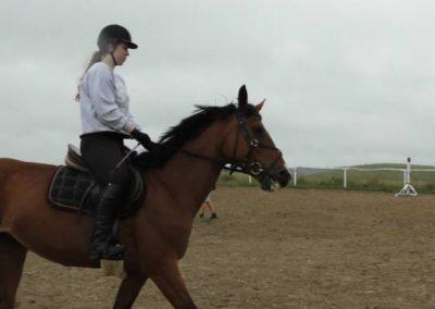 oboz-konie-2013-1-0012