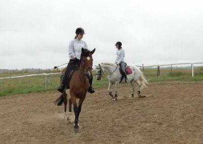 oboz-konie-2013-1-0015