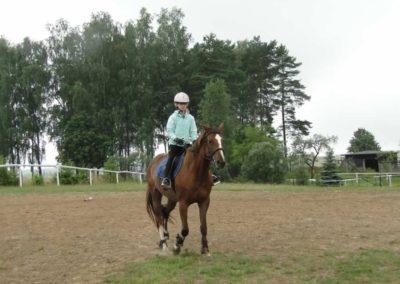 oboz-konie-2013-1-0016