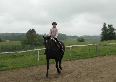 oboz-konie-2013-1-0017