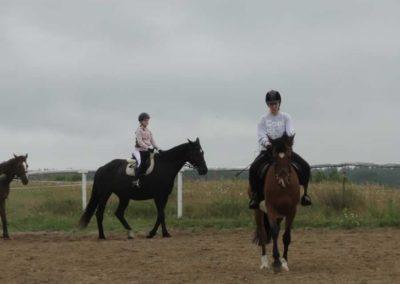 oboz-konie-2013-1-0020