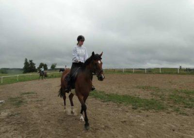 oboz-konie-2013-1-0021