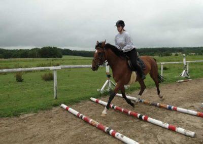oboz-konie-2013-1-0027