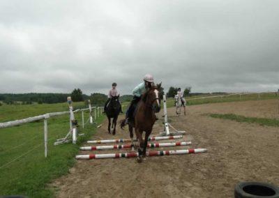 oboz-konie-2013-1-0028