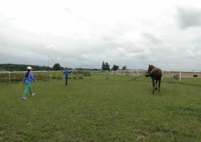oboz-konie-2013-1-0033