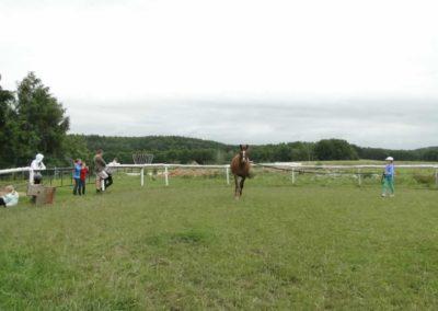 oboz-konie-2013-1-0034