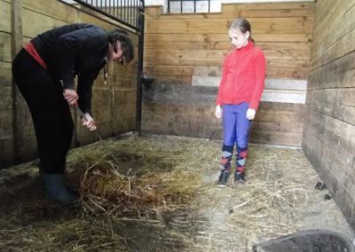 oboz-konie-2013-1-0038