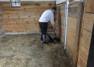 oboz-konie-2013-1-0039