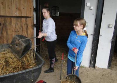 oboz-konie-2013-1-0040