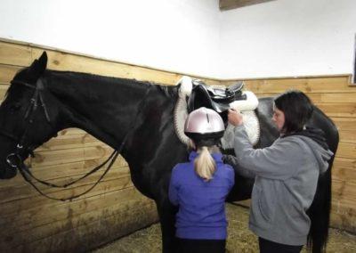 oboz-konie-2013-1-0044