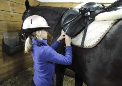 oboz-konie-2013-1-0045