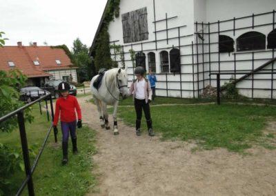 oboz-konie-2013-1-0049