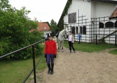 oboz-konie-2013-1-0050