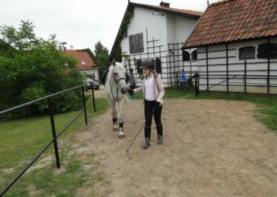 oboz-konie-2013-1-0051
