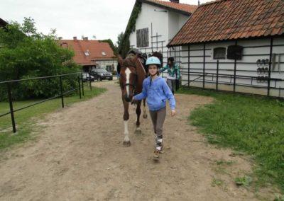 oboz-konie-2013-1-0052