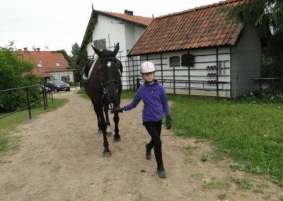 oboz-konie-2013-1-0054