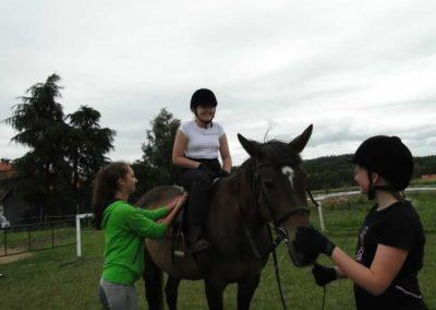 oboz-konie-2013-1-0055