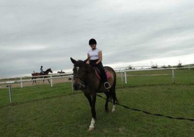oboz-konie-2013-1-0057