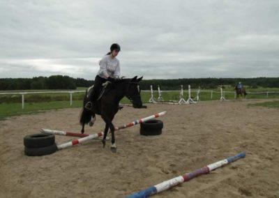 oboz-konie-2013-1-0061