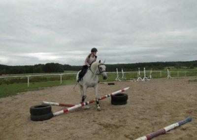 oboz-konie-2013-1-0063