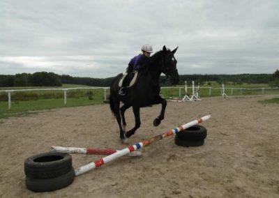 oboz-konie-2013-1-0064