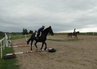 oboz-konie-2013-1-0065