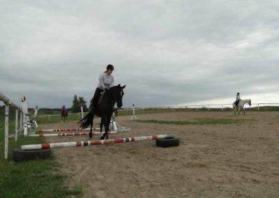 oboz-konie-2013-1-0066