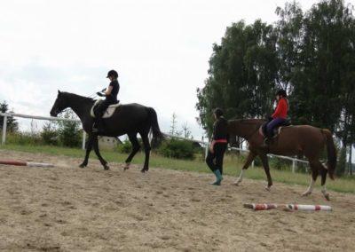 oboz-konie-2013-1-0073
