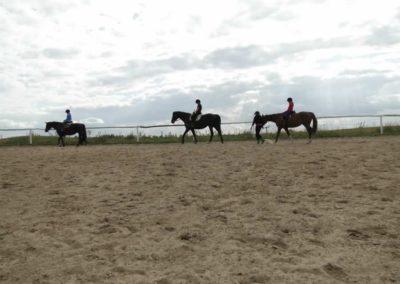 oboz-konie-2013-1-0074