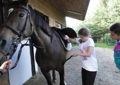 oboz-konie-2013-1-0077