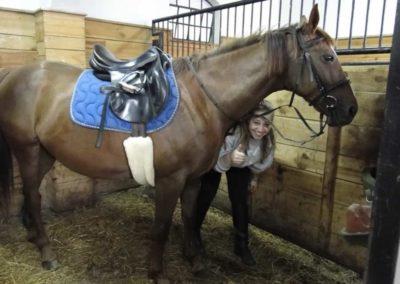 oboz-konie-2013-2-0002