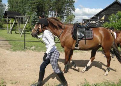 oboz-konie-2013-2-0004