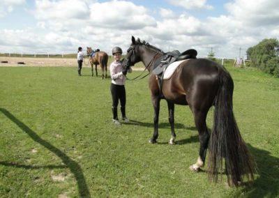 oboz-konie-2013-2-0005