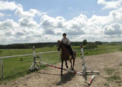 oboz-konie-2013-2-0009