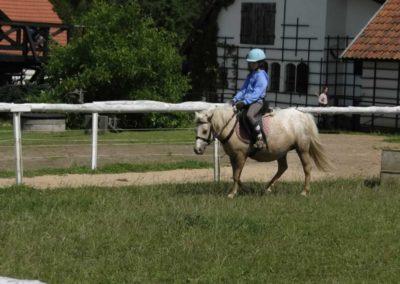 oboz-konie-2013-2-0010
