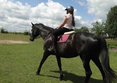 oboz-konie-2013-2-0011