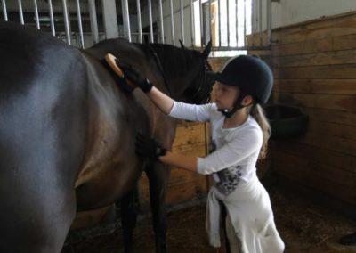 oboz-konie-2013-3-0002