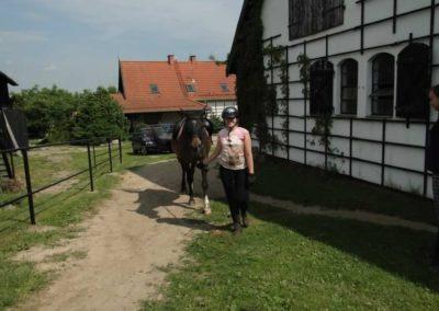 oboz-konie-2013-3-0003