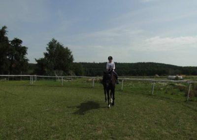 oboz-konie-2013-3-0005