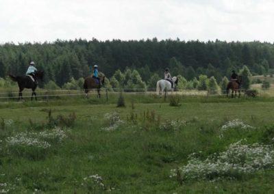oboz-konie-2013-3-0009